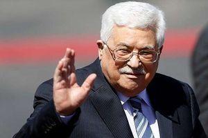 Palestine tìm cơ chế mới cho tiến trình hòa bình