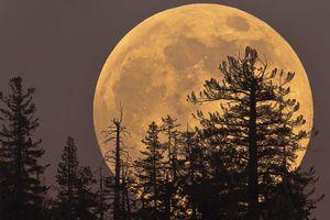 Hiện tượng lạ 40 năm có 1 lần: Siêu trăng, nhật thực xuất hiện đúng 'thứ 6 ngày 13'