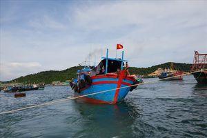 Tình hình sức khỏe các ngư dân bị đắm tàu tại vùng biển Cô Tô