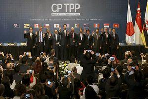Nhật Bản hối thúc các nước tham gia đưa CPTPP có hiệu lực vào đầu năm 2019