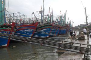 Hoàng Mai giữ liên lạc với hơn 70 tàu thuyền tránh trú ngoài địa bàn