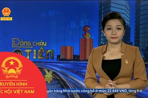 BẢN TIN DÒNG CHẢY CỦA TIỀN TRƯA NGÀY 18/07/2018