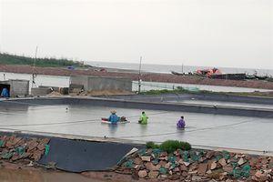 Bộ trưởng Nguyễn Xuân Cường: Nam Định không được chủ quan với bão số 3