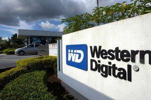 Western Digital đóng cửa nhà máy ổ cứng HDD giữa 'bão' SSD