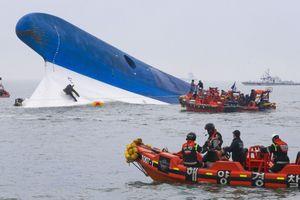 Chính phủ Hàn Quốc phải đền bù cho nạn nhân vụ chìm phà Sewol