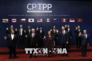 Nhất trí thời điểm khởi động đàm phán với các nền kinh tế muốn gia nhập CPTPP