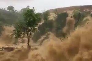 Clip: Lũ quét 'hoành hành' ở Sơn La