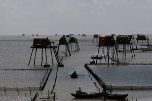 Sức hút du lịch biển Đồng Châu