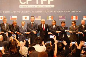 Singapore là nước thứ 3 phê chuẩn Hiệp định CPTPP