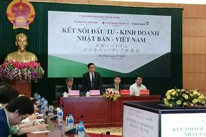 Kết nối đầu tư kinh doanh Nhật Bản - Việt Nam