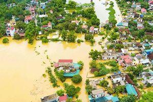 Nho Quan (Ninh Bình): Nhiều hộ dân bị cô lập bởi mưa lũ