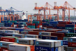 213 container bị mất tích yêu cầu kiểm điểm trách nhiệm người đứng đầu