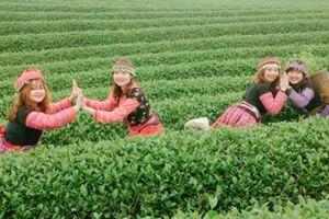 5 địa điểm du lịch ở Sơn La đã đến là phải check-in