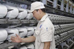 Chuẩn bị cho vận hành lại toàn bộ Nhà máy Xơ sợi Đình Vũ