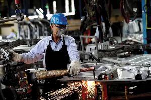 Thị trường thiếu nhiều lao động tri thức