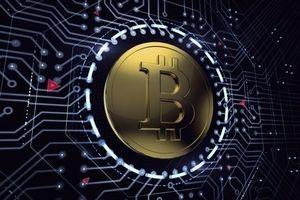 Giá Bitcoin hôm nay 23/7: Bitcoin cash sụt giảm nghiêm trọng