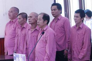 Điều tra bổ sung vụ phá rừng lớn nhất Bình Định