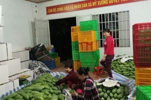Hàng Việt phải chinh phục người tiêu dùng Việt!