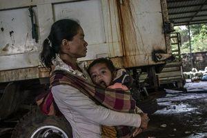 Vỡ đập Lào: Mẹ cột con vào người sẵn sàng chết chung
