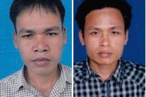 Vụ phá rừng lim cổ thụ tại Quảng Nam: Hai đối tượng bị truy nã ra đầu thú