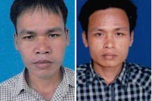 Quảng Nam: 2 nghi can chủ mưu phá rừng lim xanh ra đầu thú