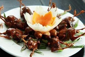 Món ăn, bài thuốc chữa vô sinh cho nam giới từ chim sẻ cực hiệu quả