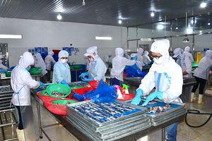Khai thác tối đa tiềm năng đưa thủy sản thành ngành kinh tế mũi nhọn