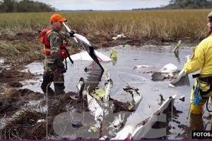 Tìm thấy máy bay chở Bộ trưởng Nông nghiệp Paraguay mất tích