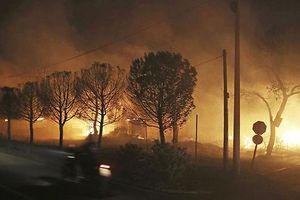 Chính phủ Hy Lạp mở cuộc điều tra vụ cháy rừng