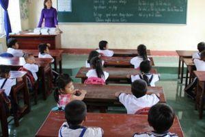 Cà Mau: Cắt hợp đồng hơn 1.400 giáo viên