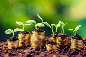 Kinh tế phi chính thức ở Việt Nam và một số khuyến nghị