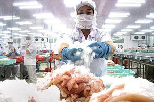 Cá tra: mọi ánh mắt đang nhìn thị trường Trung Quốc
