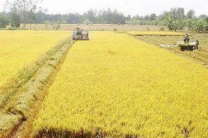 Hà Nam: Chuyển mục đích sử dụng 32,7 ha đất sang phi nông nghiệp