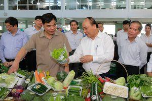 Thủ tướng thăm mô hình nông nghiệp sạch tại Lâm Đồng