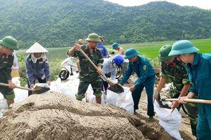 Không để thành quả lao động của người dân bị mưa lũ cuốn trôi