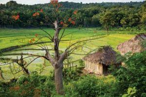 Những tour du lịch Châu Á hấp dẫn nhất, không thể bỏ qua trong năm nay