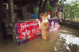 Ngập lụt kéo dài tại Myanmar: 50.000 người sơ tán, cầu bê tông bị cuốn trôi