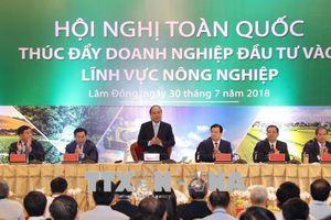 Thủ tướng: Phấn đấu đưa nông nghiệp vào top 15 nước phát triển nhất thế giới