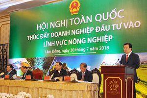Nông sản Việt đi tìm chuỗi giá trị từ trang trại đến bàn ăn