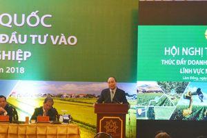Cả nước có 49.600 doanh nghiệp đầu tư vào nông nghiệp