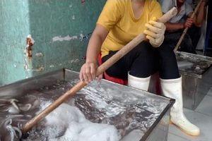 Những nghi vấn trong vụ bạch tuộc có chất Chloramphenicol ở Hà Nội