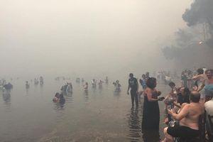 Cháy rừng - người dân Hy Lạp trầm mình xuống biển để tự cứu