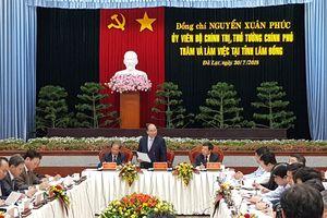 Lâm Đồng kiến nghị Thủ tướng gỡ khó vì nhiều dự án vướng 'đóng cửa rừng'