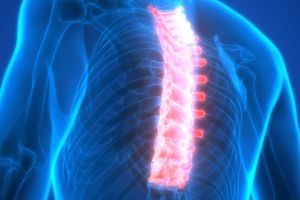 Thói quen hàng ngày gây hư hại xương cột sống