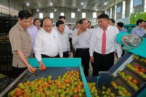 Thủ tướng Nguyễn Xuân Phúc gợi ý 'tam giác' phát triển cho Lâm Đồng