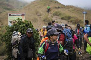 Indonesia giải cứu hơn 1.000 người mắc kẹt trên núi sau động đất
