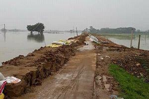 Mưa lớn tiếp diễn, hàng nghìn hộ dân ở Chương Mỹ đối mặt với ngập lụt