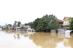 Tình hình mực nước các sông hồ trên địa bàn TP