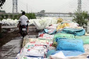 Chùm ảnh: Dân đê sông Bùi vật lộn chống lũ