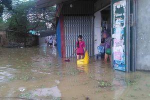 Hà Nội: Tập trung phòng chống dịch bệnh trong mùa mưa lũ